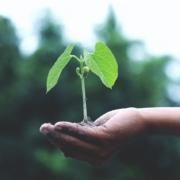 [Antavo] Programas de fidelidade com pegada verde são o futuro